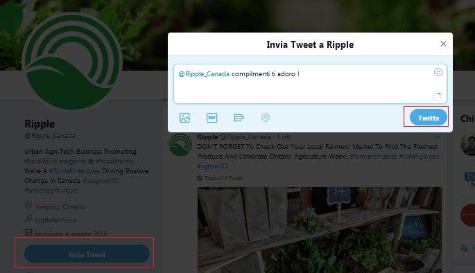 In questo tutorial voglio spiegarti come twittare messaggi privati. Quindi ascoltami attentamente.