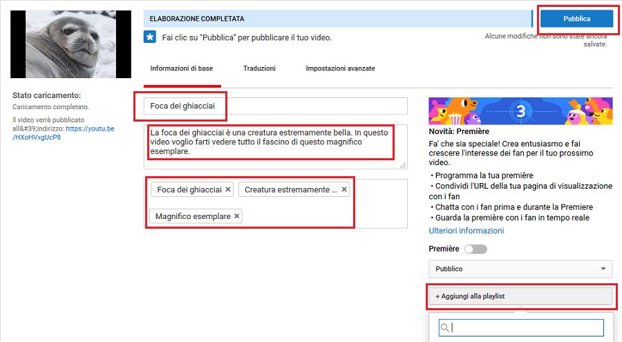 Vorrei farti un esempio di pubblicazione di un video su Youtube