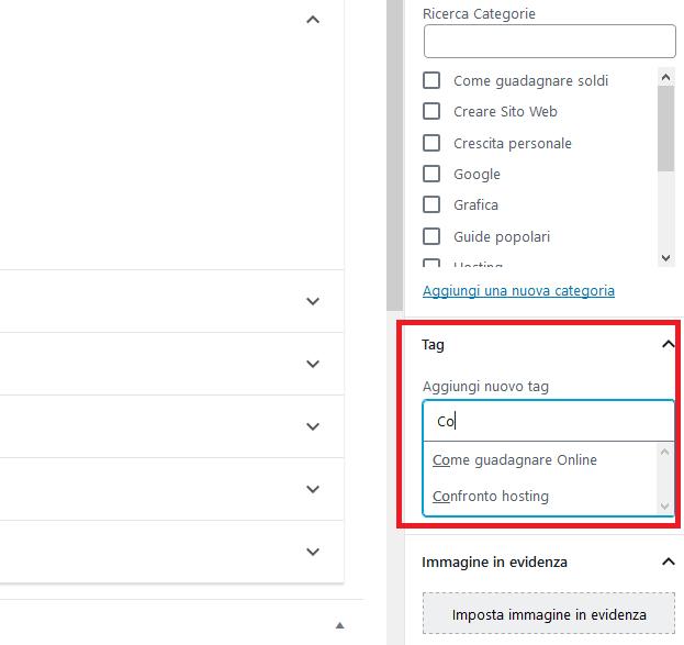 Vediamo subito come procedere con l' aggiunta di un TAG su WordPress